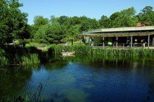 Gijon's Atlantic Botanic Gardens