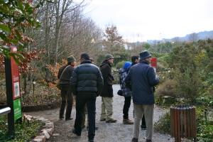 Birdwatching at Gijón's Atlantic Botanical Garden